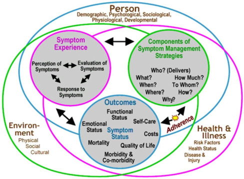 outline theories about the experience of pain